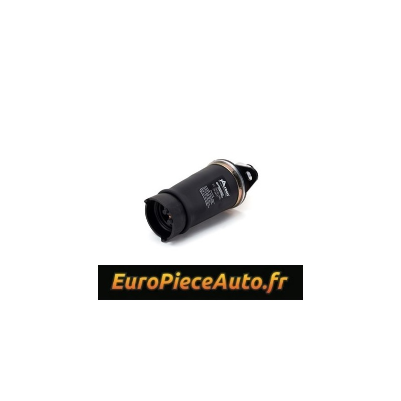 Boudin pneumatique arriere membrane Goodyear - Audi Allroad 2000-2006(C5)