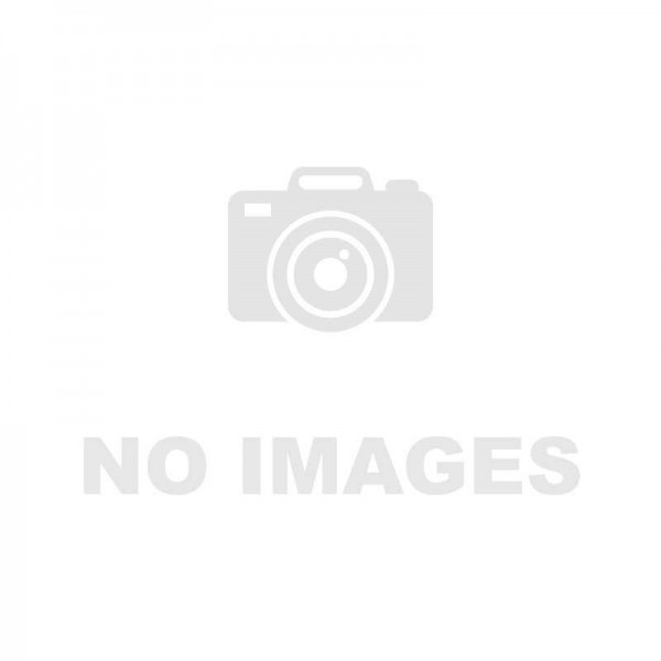 Injecteur Bosch 0445110201/202 Echange Standard