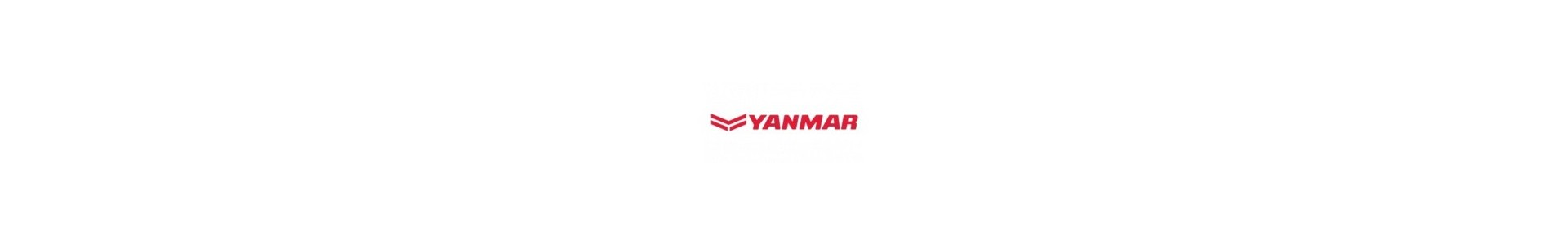 Injecteurs Yanmar